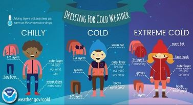 cold_infographic4